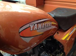 Half Yamaha, half Kawasaki?